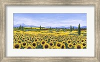 Framed Girasoli