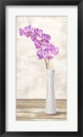 Framed Orchid Arrangement
