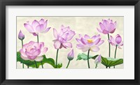 Framed Lotus Flowers