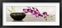Framed Orchid Arrangement