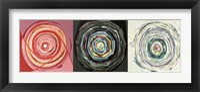 Target Trio I Framed Print