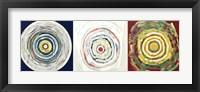 Target Trio II Framed Print