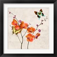 Framed Orchids & Butterflies I