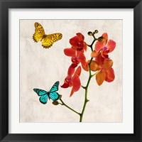 Framed Orchids & Butterflies II