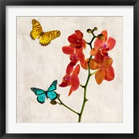 Framed Orchids & Butterflies II