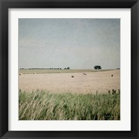 Framed Neutral Country II