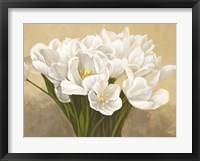 Framed Tulipes Blanches