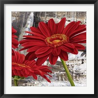 Framed Red Gerberas II
