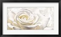 Framed White on White