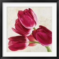 Framed Tulip Concerto (Detail)