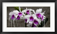 Framed Orchid Blackboard