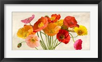 Framed Poppies in Spring
