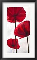 Framed Reds III
