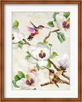 Framed Magnolia and Humming Birds