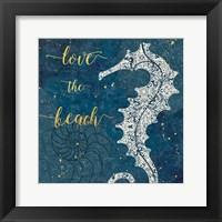 Framed Coastal Lace VII