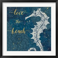 Framed Coastal Lace VII