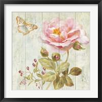 Framed Natural Flora II