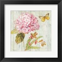 Framed Natural Flora III