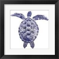 Framed Marine Turtle I