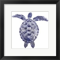 Marine Turtle I Framed Print
