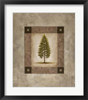 Framed European Pine I