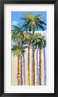 Framed Shadow Palms I