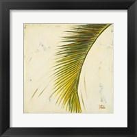 Framed Baru Palm II