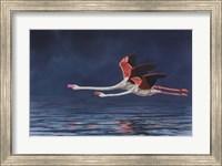 Framed Flying Flamingos