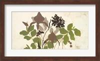 Framed Spring Shadows I