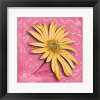 Framed Blooming Daisy II