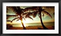 Framed Bimini Sunset II