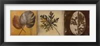 Framed Natural Panel I