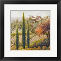 Framed Tuscany Vineyard II