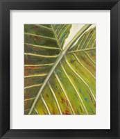 Framed Green Zoom I