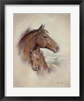 Framed Race Horse II