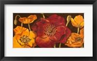 Framed Dazzling Poppies I (black background)