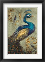 Framed Peacock on Sage I