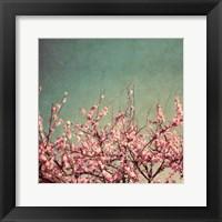 Springtime II Framed Print