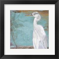 Tropic Heron II Framed Print