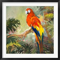 Framed Parrots at Bay I