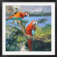 Framed Parrots at Bay II