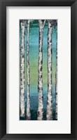 Tall Trees I Framed Print