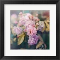 Framed Season of Blossoms