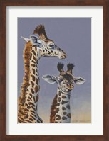 Framed Two Young Giraffes
