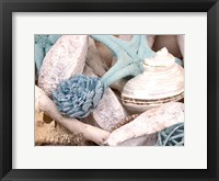 Framed Bundle of Shells II