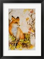Mystic Woodland I Framed Print