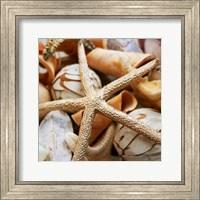 Framed Gold Starfish I