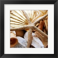 Framed Gold Starfish II