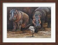 Framed Baby Hippos