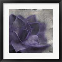 Framed Lavender Succulent II